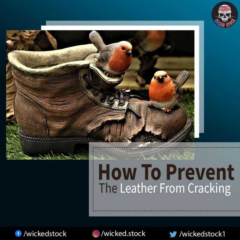 The Leather From Cracking